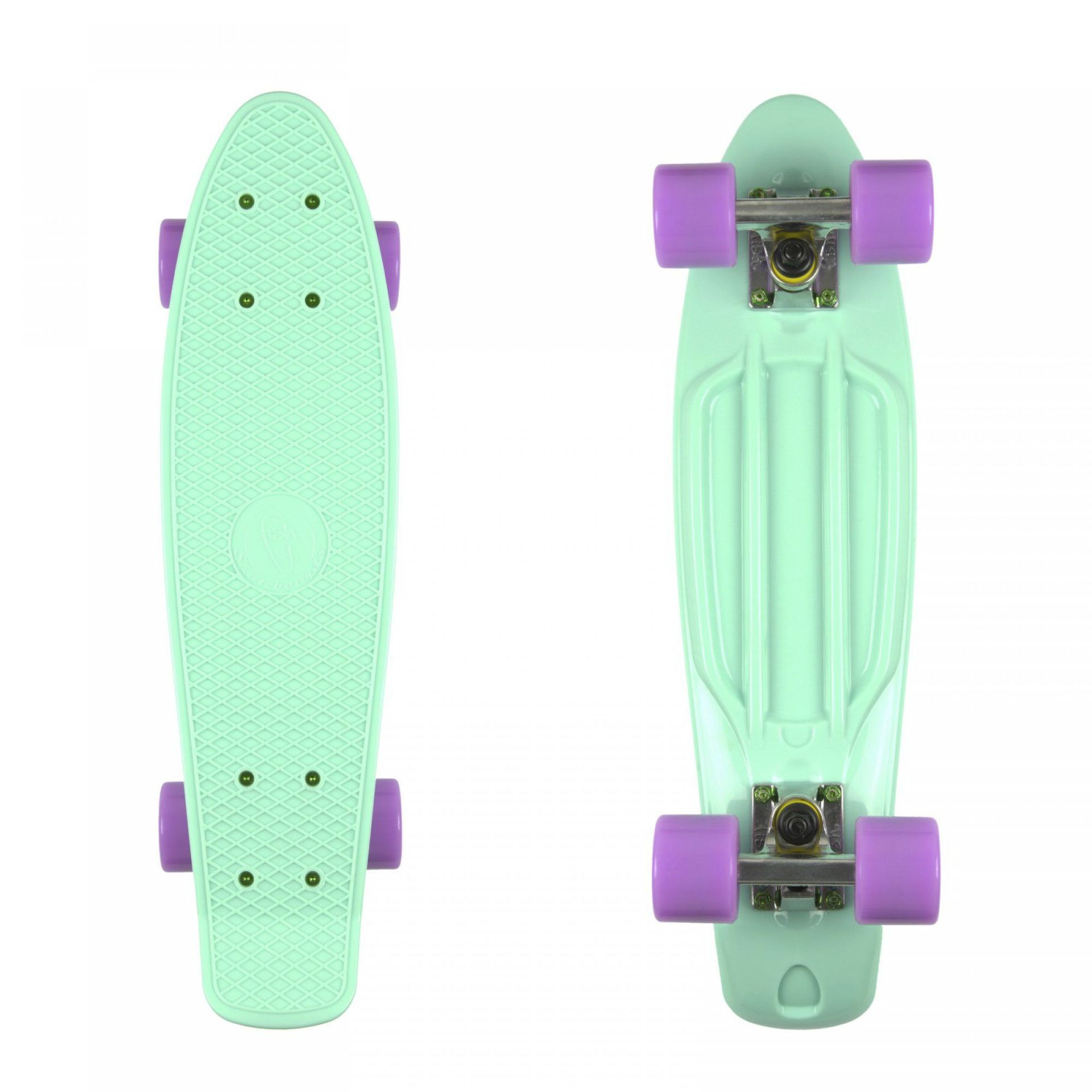 FISHBOARD FISH SKATEBOARDS CLASSIC SUMMER GREEN SILVER PURPLE