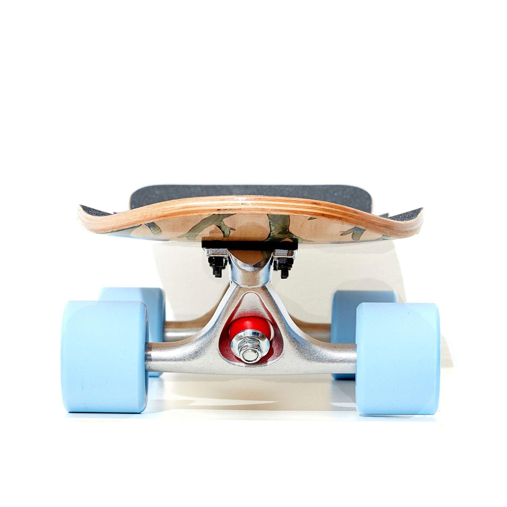 LONGBOARD FISH SKATEBOARDS CRUISER 32 SEADRAGON|SILVER|SUMMER BLUE 2