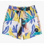 BOARDSHORTY QUIKSILVER NO DESTINATION EQBJV03259 WBK6