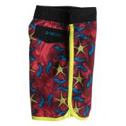 BOARDSHORTY QUIKSILVER STAR GAZE 1